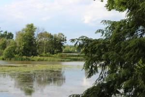 Campground Photo lake 1