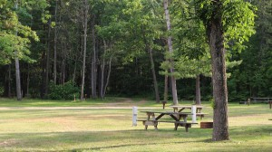 Campground Photo sites 6