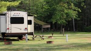 Campground Photo sites 11